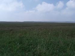 Prairie In the Air