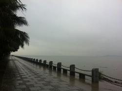 Shenzhen Bay Park
