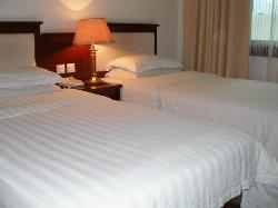 Shufeng Lingyun Hotel