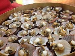 Jiaodong Beibei Seafood Stalls