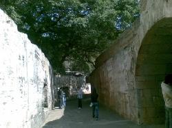 Weiyuan Fort