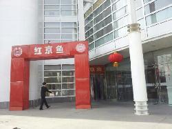 Hong Jing Yu (ShangDi)
