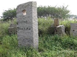 Jiaxing Majiabang Site
