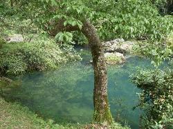 茂兰保护区