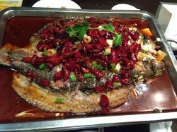 Zhuge Grilled Fish (GuangGu Tai YangCheng)