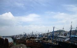Wuyu Island