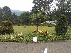酒店的花园