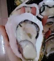 Yuan Lv Sushi (RuiJing)