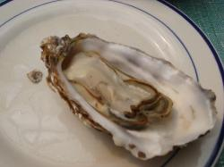 Seafood XiaoChao