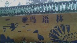 Fuzhou Bird-lam
