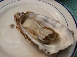 ZhenBao Seafood Fang