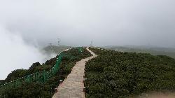 Poshang Grassland Scenic