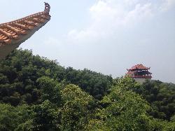 Taohuajiang Bamboo Scenic Resort