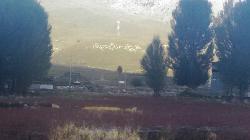 Sangdui Red Grass Field