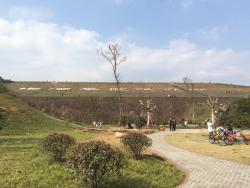 Meiwan Lake