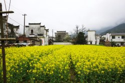 Qingyuan Ancient Village