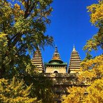 Peking Five-Pagoda Temple (Wuta Si)