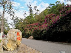 Wenzeng Road Strange Slope