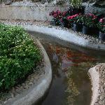 酒店植物园1