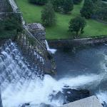 克劳顿大坝下游