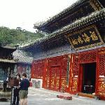 Pool and Mulberry Tree Temple (Tanzhe Si)