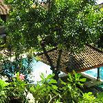 旅馆的游泳池