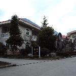 别墅式小楼