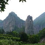 Mt.Yandang Resort