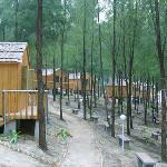 Haining Holiday Resort