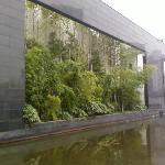 Changsha Bamboo Slips Museum Photo