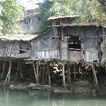 这是百年吊脚楼,当时觉得很有意义就拍了,其实可以看到水质很脏很脏。