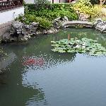 花园式酒店