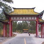 Beijicun Forest Park