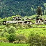 鲁朗-村庄