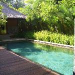 乌布肉桂私人豪华villa的泳池
