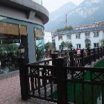 酒店内绿化