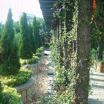 Foto de Lilac Garden Hotel