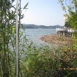Foto de Lakeside Camphor Tree Hotel