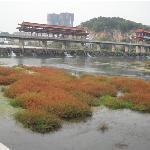 Yichun Wetland Park
