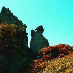 Shennongjia Foto