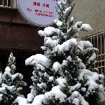 雪后黄山之家