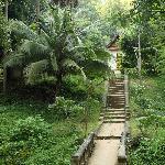 隐没与丛林间的隆昆寺