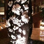 酒店大堂的菊花石