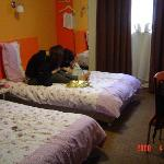 Photo de Motel 168 (Dalian Youhao Square)