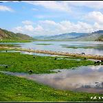 扎溪卡草原