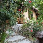 这是我们住的小木屋!绿树环绕~