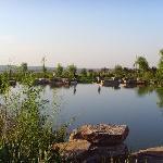 植物园的人工湖