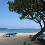 酒店的私家海滩