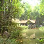 Santai Du Fu's Thatched Cottage