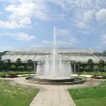 武汉植物园的喷泉广场在玻璃花房的衬映下
